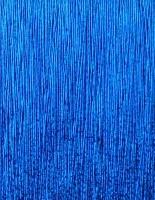 99055 BLUE ADIDAS